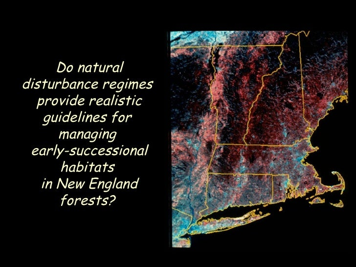 Do natural disturbance regimes  provide realistic guidelines for  managing  early-successional habitats  in New England fo...