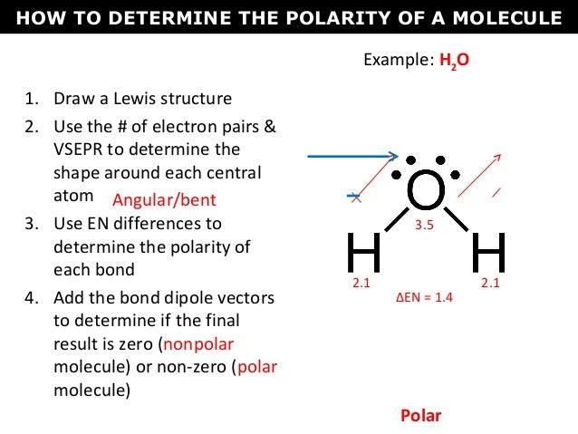 Which Represents A Polar Molecule Electron Dot Diagram Wiring