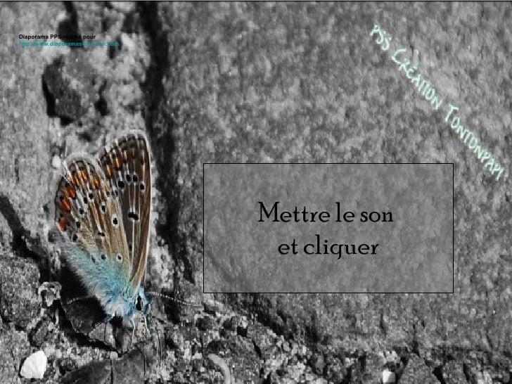 Mettre le son  et cliquer Diaporama PPS réalisé pour  http://www.diaporamas-a-la-con.com