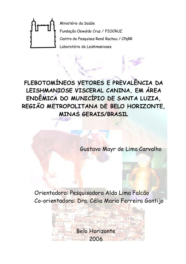 Ministério da Saúde  Fundação Oswaldo Cruz / FIOCRUZ  Centro de Pesquisas René Rachou / CPqRR  Laboratório de Leishmaniose...