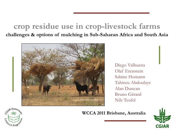 crop residue use in crop-livestock farmschallenges & options of mulching in Sub-Saharan Africa and South Asia             ...