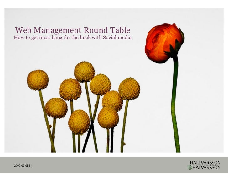 Web Management Round Table How to get most bang for the buck with Social media     09-02-05 | 1