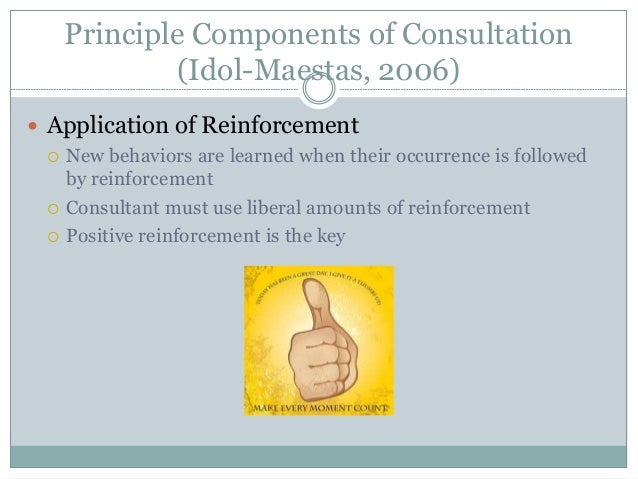 Principle Components of Consultation (Idol-Maestas, 2006)  Application of Reinforcement  New behaviors are learned when ...