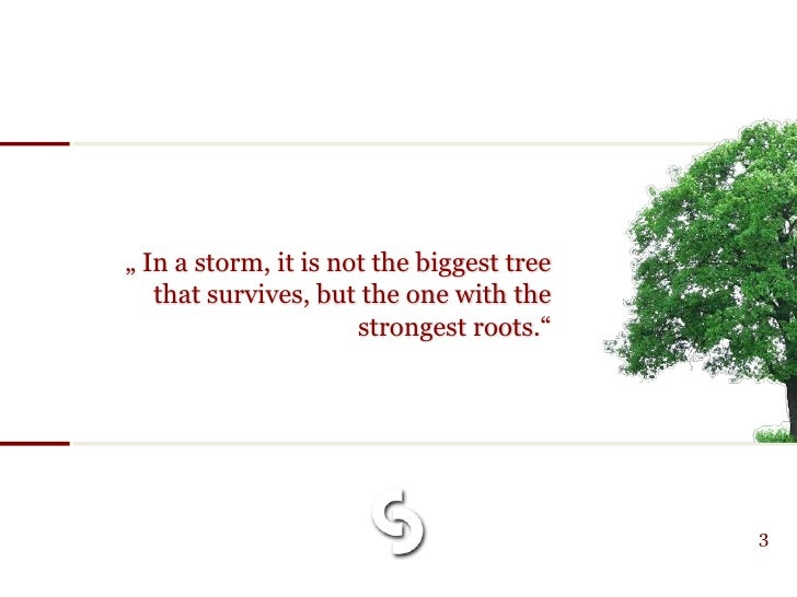 """"""" In a storm, it is not the biggest tree    that survives, but the one with the                       strongest roots.""""   ..."""