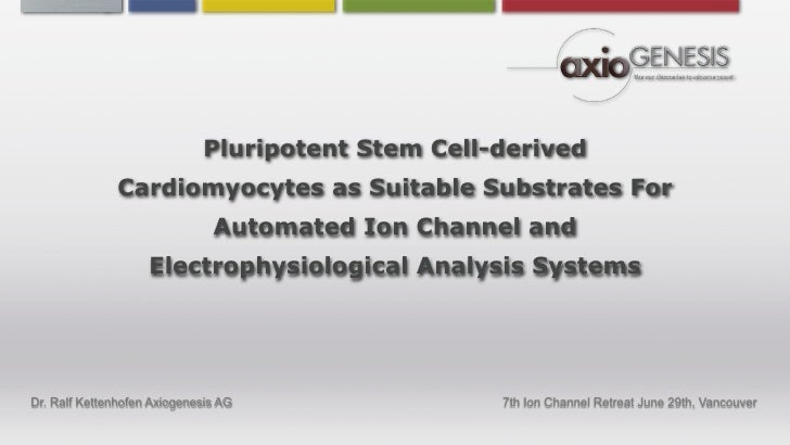 Pluripotent Stem Cell-derived                Cardiomyocytes as Suitable Substrates For                                Auto...