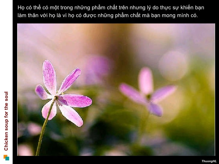 091005 Nhung Nguoi Ban Nen Co Slide 3