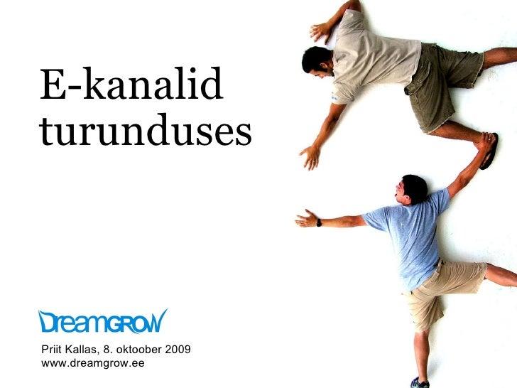 E-kanalid turunduses Priit Kallas, 8. oktoober 2009 www.dreamgrow.ee