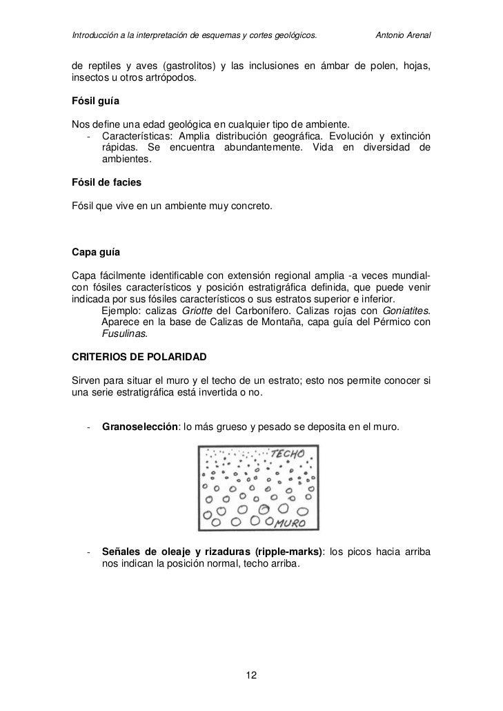 Introducción a la interpretación de esquemas y cortes geológicos.   Antonio Arenal   de reptiles y aves (gastrolitos) y la...