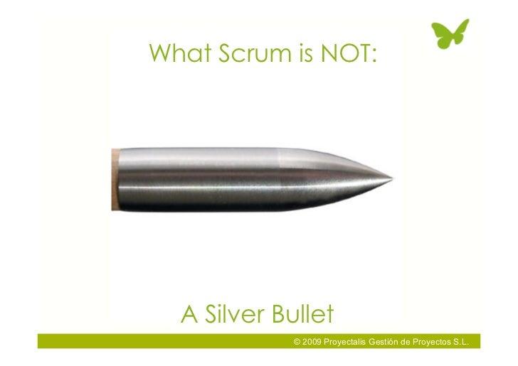 What Scrum is NOT:       A Silver Bullet              © 2009 Proyectalis Gestión de Proyectos S.L.