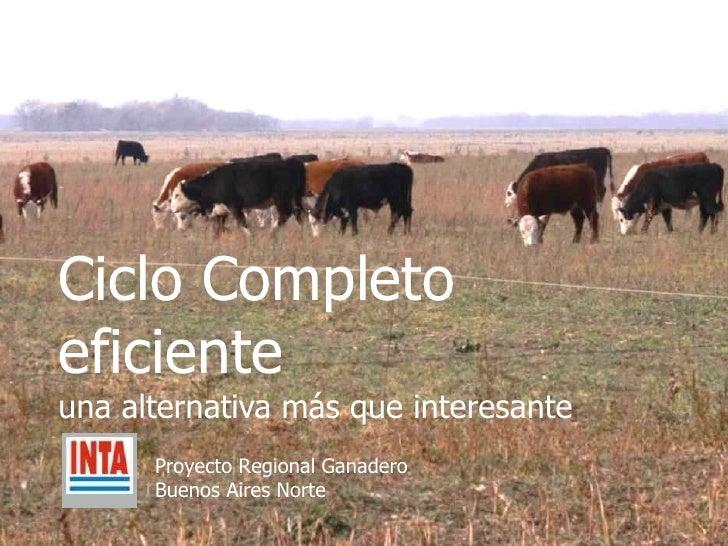 Ciclo Completo eficiente una alternativa más que interesante Proyecto Regional Ganadero  Buenos Aires Norte