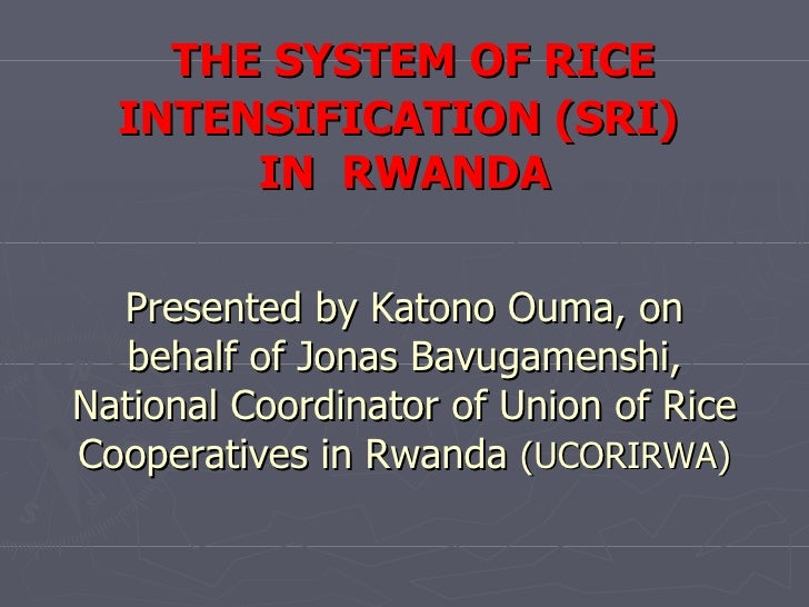 THE SYSTEM OF RICE INTENSIFICATION (SRI)  IN  RWANDA Presented by Katono Ouma, on behalf of Jonas Bavugamenshi, National C...