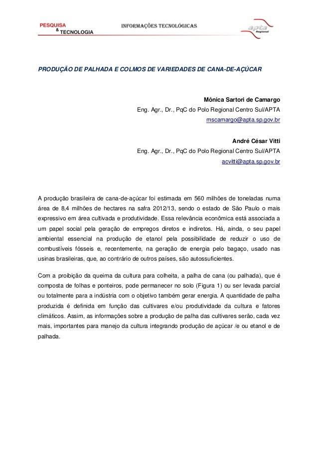 PRODUÇÃO DE PALHADA E COLMOS DE VARIEDADES DE CANA-DE-AÇÚCAR Mônica Sartori de Camargo Eng. Agr., Dr., PqC do Polo Regiona...
