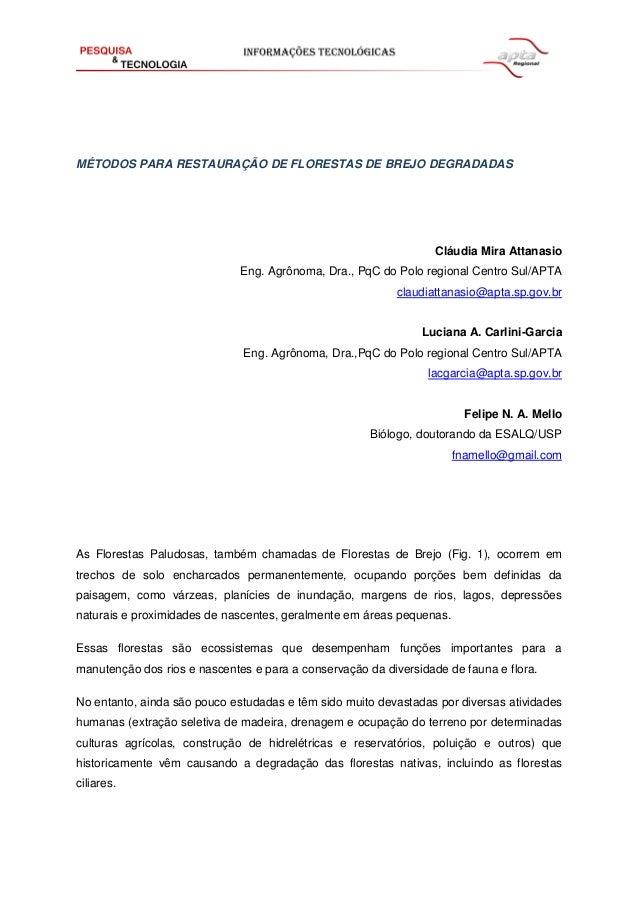 MÉTODOS PARA RESTAURAÇÃO DE FLORESTAS DE BREJO DEGRADADAS Cláudia Mira Attanasio Eng. Agrônoma, Dra., PqC do Polo regional...