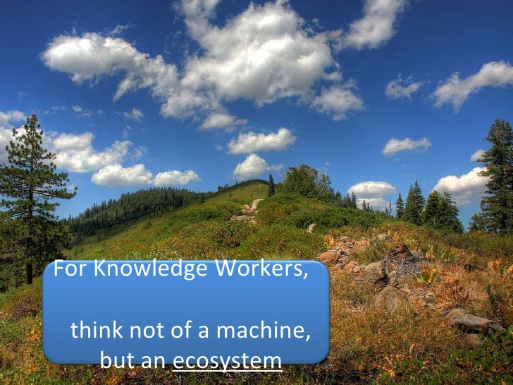 For Knowledge Workers,    think not of a machine, but an  ecosystem