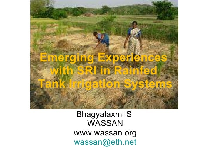 Emerging Experiences  with SRI in Rainfed  Tank Irrigation Systems Bhagyalaxmi S  WASSAN www.wassan.org [email_address]