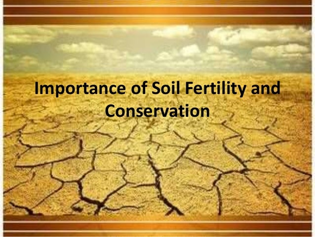 Importance of Soil Fertility and Conservation
