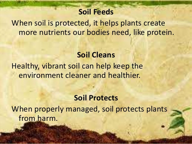 Soil Feeds When soil is protected, it helps plants create more nutrients our bodies need, like protein. Soil Cleans Health...