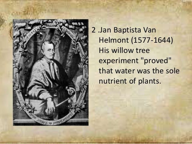 """2 .Jan Baptista Van Helmont (1577-1644) His willow tree experiment """"proved"""" that water was the sole nutrient of plants."""