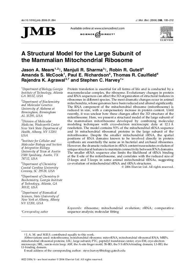 A Structural Model for the Large Subunit ofthe Mammalian Mitochondrial RibosomeJason A. Mears1,2†, Manjuli R. Sharma3†, Ro...