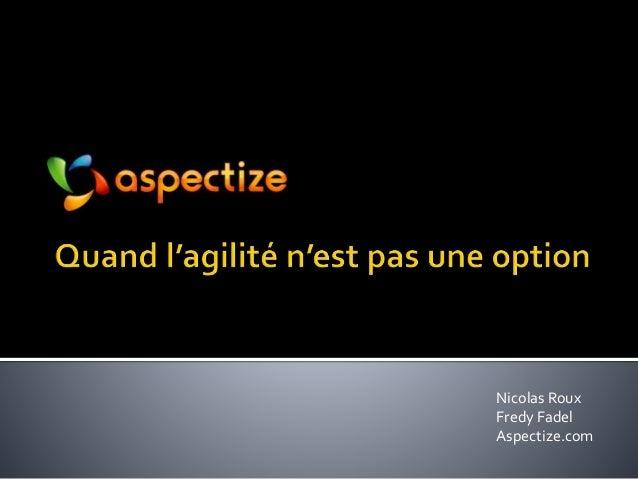Nicolas Roux Fredy Fadel Aspectize.com