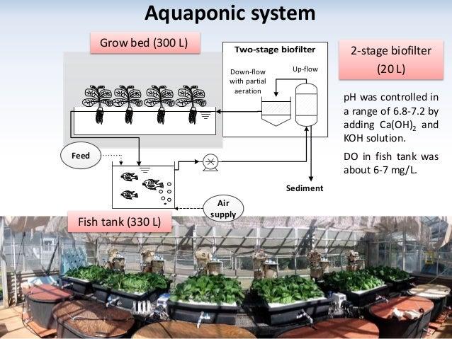 Nitrogen transformations in aquaponic systems for Aquaponics aeration