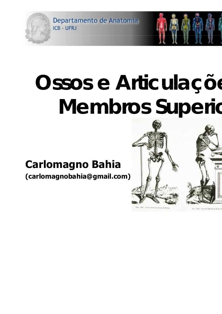Ossos e Articulações dos    Membros SuperioresCarlomagno B hiC l        Bahia(carlomagnobahia@gmail.com)