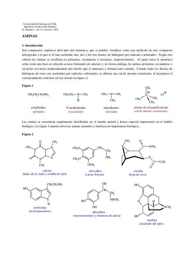 Universidad de Santiago de Chile Ingeniería de Ejecución Química Q. Orgánica – Dr. N. Carrasco 2012  AMINAS 1- Introducció...