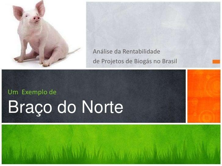 Análise da Rentabilidade                de Projetos de Biogás no BrasilUm Exemplo deBraço do Norte