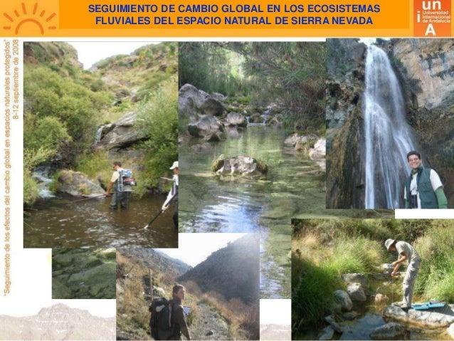 SEGUIMIENTO DE CAMBIO GLOBAL EN LOS ECOSISTEMAS FLUVIALES DEL ESPACIO NATURAL DE SIERRA NEVADA