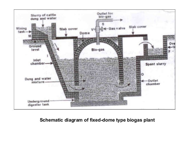 09 biomass energy