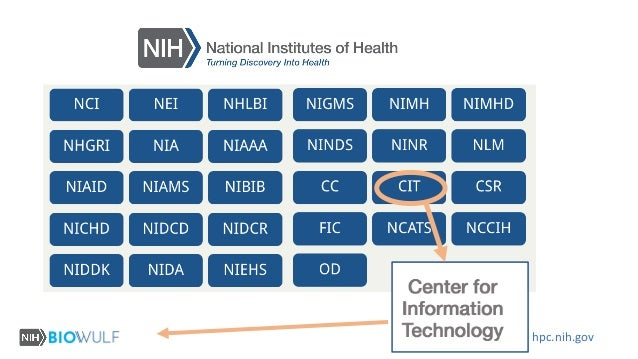 Data Sharing via Globus in the NIH Intramural Program