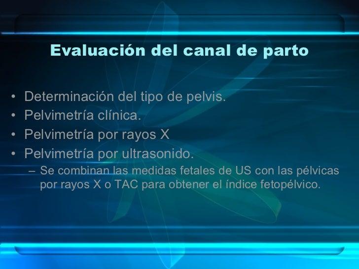 Evaluación del canal de parto <ul><li>Determinación del tipo de pelvis. </li></ul><ul><li>Pelvimetría clínica. </li></ul><...
