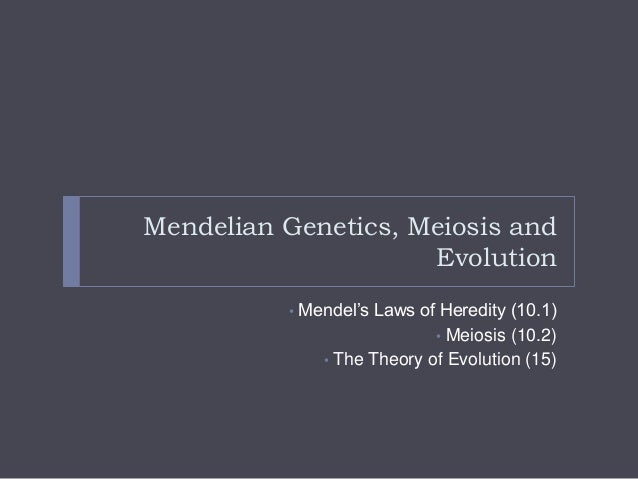 """Mendelian Genetics, Meiosis and Evolution •  Mendel""""s Laws of Heredity (10.1) • Meiosis (10.2) • The Theory of Evolution (..."""