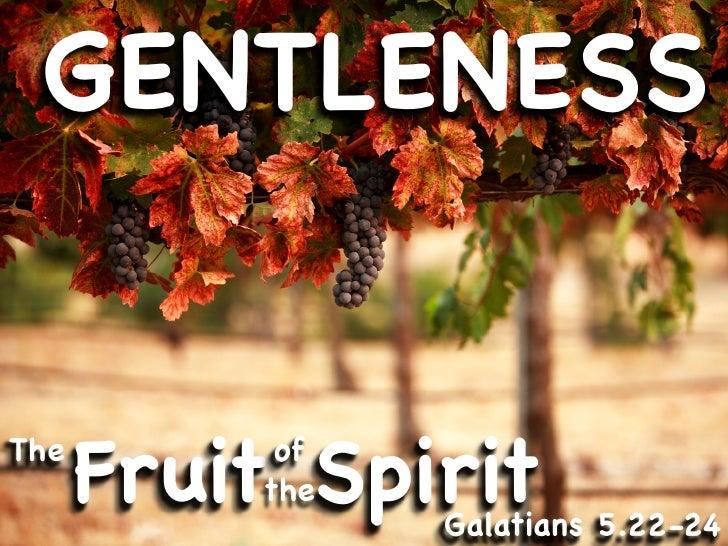 GENTLENESS   The       Fruit Spirit            of           the                 Galatians 5.22-24