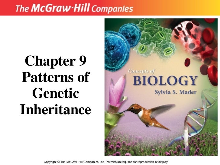 Copyright  ©  The McGraw-Hill Companies, Inc. Permission required for reproduction or display. Chapter 9 Patterns of Genet...