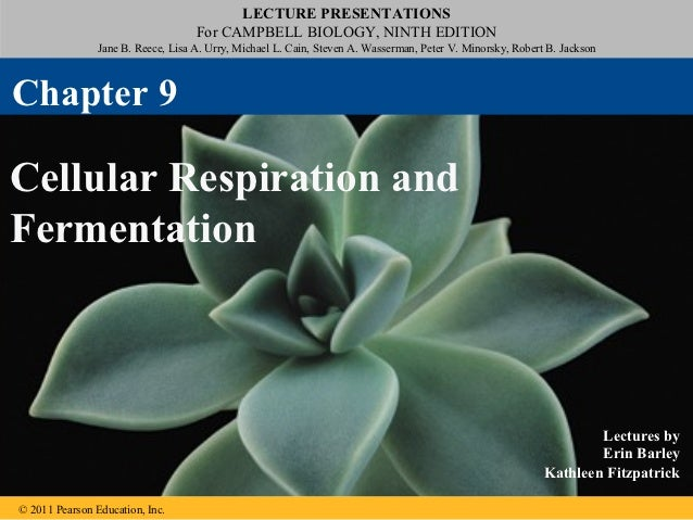 LECTURE PRESENTATIONS                                    For CAMPBELL BIOLOGY, NINTH EDITION                Jane B. Reece,...