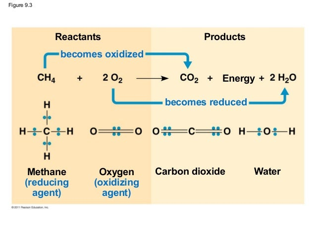 what are any reactants plus services involving mobile or portable respiration