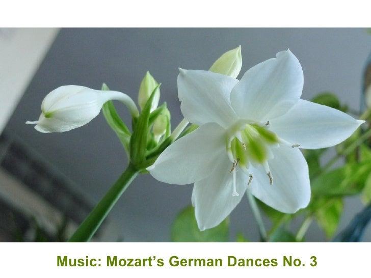 Music: Mozart's German Dances No. 3