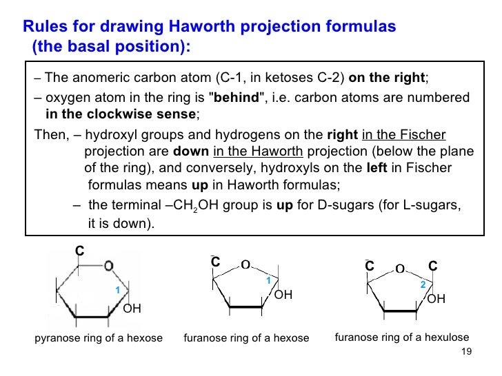 haworth projections Isomerism: structural isomers and stereoisomers the cyclic structure of monosaccharides is commonly represented using haworth projections.