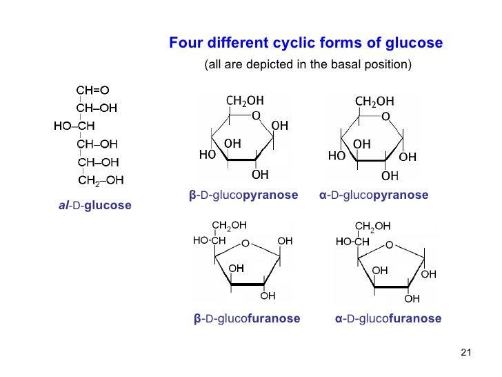 L Galactose Chair 09 monosaccharides and...