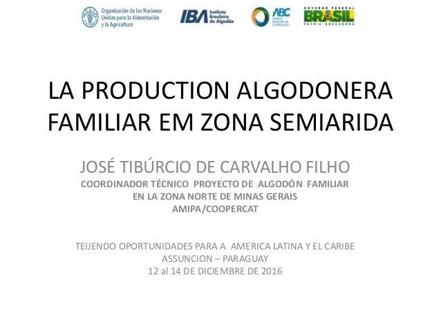 LA PRODUCTION ALGODONERA FAMILIAR EM ZONA SEMIARIDA JOSÉ TIBÚRCIO DE CARVALHO FILHO COORDINADOR TÉCNICO PROYECTO DE ALGODÓ...