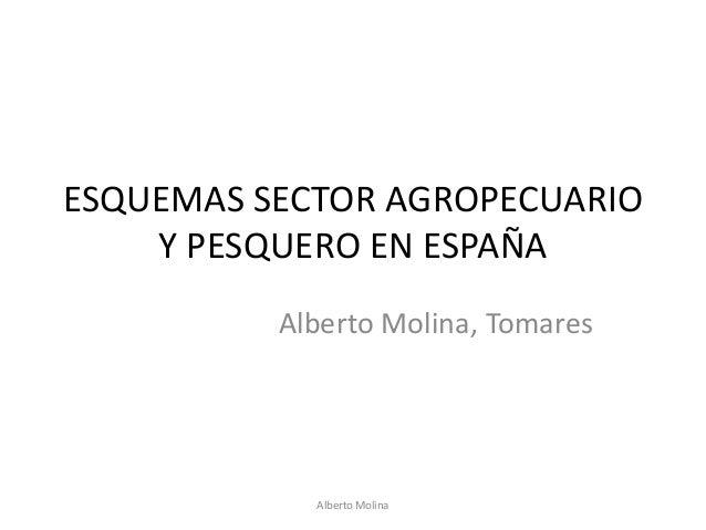 ESQUEMAS SECTOR AGROPECUARIO Y PESQUERO EN ESPAÑA Alberto Molina, Tomares  Alberto Molina