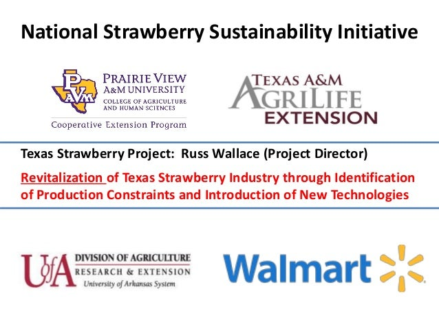 National Strawberry Sustainability Initiative Texas Strawberry Project: Russ Wallace (Project Director) Revitalization of ...