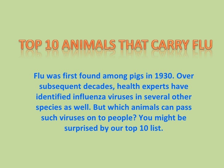 Flu was first found among pigs in 1930. Over subsequent decades, health experts have identified influenza viruses in sever...