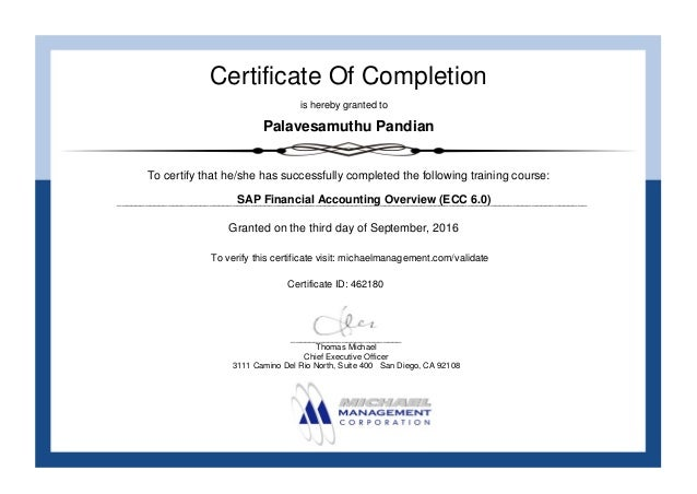 SAP Financial Accounting Overview Certification