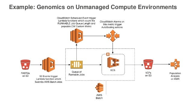 New AWS Services for Bioinformatics