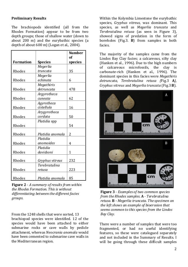 Article-Brachiopods from the Plio (4) (1)
