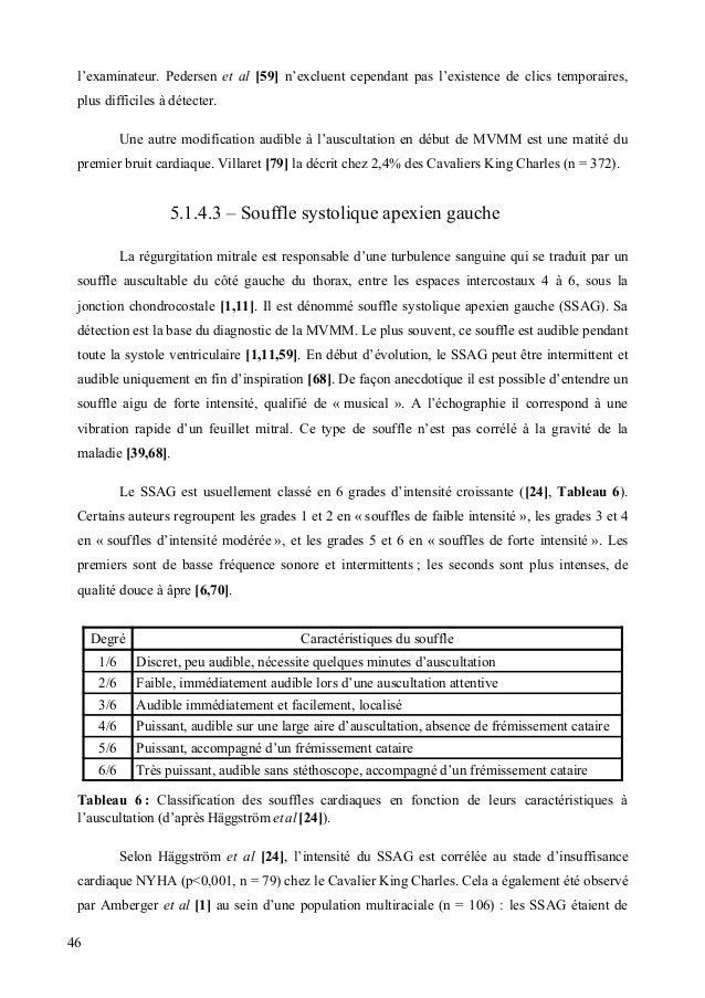 Serfass Pierre - Thèse de doctorat vétérinaire