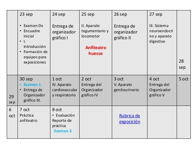 0 calendario anatomia