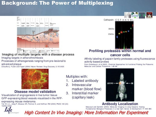 Nature Reviews Cancer Fuster